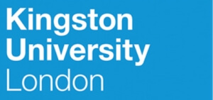 金斯頓大學
